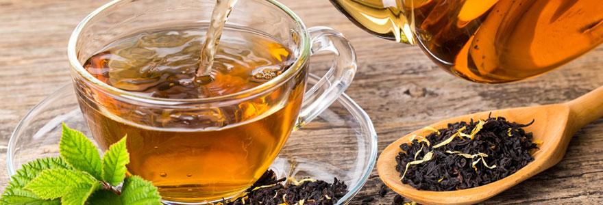 Se procurer du thé bio