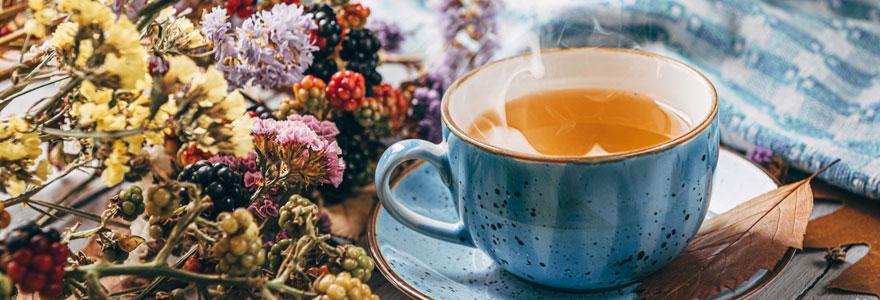 Thé en France